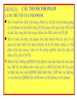 Bài giảng Luật hình sự Việt Nam-Chương 4 Cấu thành tội phạm