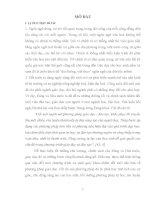 luận văn đại học sư phạm hà nội Vận dụng lý thuyết tâm biên để khắc phục lỗi chính tả cho học sinh tiểu học Đà Nẵng