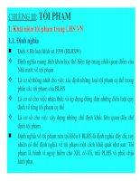 Bài giảng Luật hình sự Việt Nam-Chương 3 Tội phạm