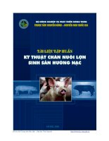tài liệu tập huấn kỹ thuạt chăn nuôi lợn sinh sản hướng nạc