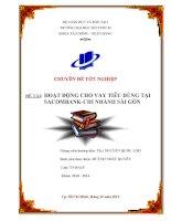 Luận văn Hoạt động cho vay tiêu dùng tại Ngân hàng Sacombank - Chi nhánh Sài Gòn