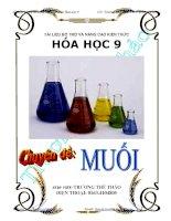 Tài liệu dạy thêm, học thêm  chuyên đề Muối hóa học lớp 9