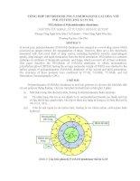 bài báo khoa học tổng hợp polyamidoamine lai hóa với polyethylene glycol