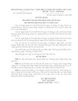 Quyết định 74/2008 - Ban hành Chương trình tiếng Chăm cấp tiểu học