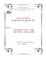 tiểu luận marketing quốc tế đề tài nghiên cứu thị trường thế giới