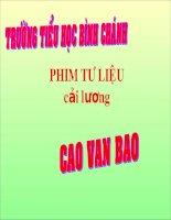 LT-C-Mở rộng vốn từ nghê thuật-Phi cải lương