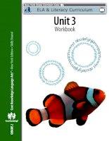Unit 3 workbook