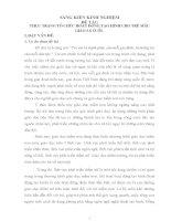 THỰC TRẠNG TỔ CHỨC HOẠT ĐỘNG TẠO HÌNH CHO TRẺ MẪU GIÁO 5-6 TUỔI
