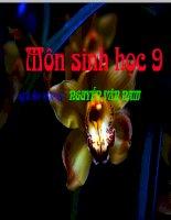 SH 9. Bai 50 HE SINH THAI
