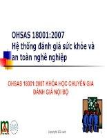 Hệ thống đánh giá sức khỏe và an toàn nghề nghiệp OHSAS 18001