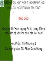 Chuyên đề-Hàm lượng Fe, Al trong đất và mối liên hệ với tính chất đất Việt Nam