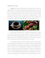 Tiểu luận môn học phát triển sản phẩm Nghiên cứu phát triển sản phẩm cà phê bột khử cafein DECAF COFFEE