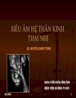 Siêu âm hệ thần kinh thai nhi, BS.Nguyễn Quang Trọng, khoa chẩn đoán hình ảnh bệnh viện An Bình TPHCM
