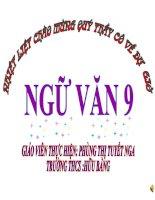 TIẾT 116 MÙA XUÂN NHO NHỎ-VĂN 9