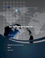 Đề tài  thảo luận đại học thương mại Hoạt động cho thuê tài chính ở Việt Nam
