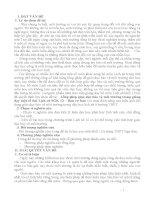SKKN Lồng ghép giáo dục bảo vệ môi trường trong giảng dạy một số bài Lịch sử SGK 12 - Ban cơ bản THPT NGA SƠN 1