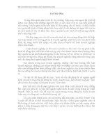 luận văn kinh tế luật một số vấn đề pháp lý về ngành nghề kinh doanh trong chế độ đăng ký kinh doanh theo luật doanh nghiệp