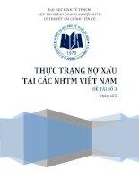 Tiểu luận thực trạng nợ xấu tại các NHTM Việt Nam