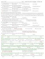 Đề kiểm tra hóa 12 học kì 2 - lần 1 -có đáp án