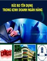 Tiểu luận môn luật ngân hàng RỦI RO TÍN DỤNG TRONG KINH DOANH NGÂN HÀNG