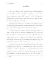 THIẾT KẾ ĐIỀU KHIỂN HỆ THỐNG CÂN BĂNG ĐỊNH LƯỢNG CỦA NHÀ MÁY XI MĂNG COSEVCO SÔNG GIANH TRÊN NỀN CÔNG NGHỆ PLC