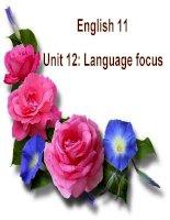 English 11 Unit 12 Language Focus