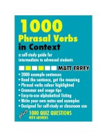 Learn 1000 phrasal verbs in context  Common