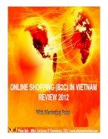 Vietnam internet shopping review 2012