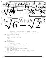 nội dung ôn tập môn toán 9 thi vào lớp 10