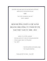 Định hướng chiến lược kinh doanh cho công ty TNHH TP-TM Sao Việt Nam từ 2008 - 2012