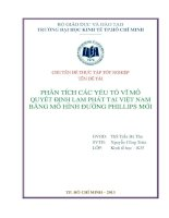 Phân tích các yếu tố vĩ mô quyết định lạm phát tại Việt Nam bằng mô hình đường Phillips mới