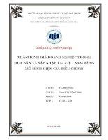 Thẩm định giá doanh nghiệp trong mua bán và sáp nhập tại Việt Nam bằng mô hình hiện giá điều chỉnh (Chuyên đề tốt nghiệp Trường Đại Học Kinh Tế, 2013)