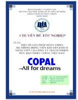 Một số giải pháp hoàn thiện hệ thống động viên khuyến khích nhân viên tại Công ty Trách nhiệm hữu hạn Nidec Copal Việt Nam