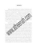 báo cáo thực tập: Kế toán bán hàng và xác định kết quả bán hàng tại Công Ty Cổ Phần Tập Đoàn HIPT