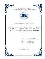 Chuyên đề thực tập Các hành vi chiến lược của tập đoàn Thái Tuấn trên thị trường nội địa  (2013)