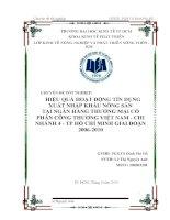 Hiệu quả hoạt động tín dụng xuất nhập khẩu nông sản tại Ngân hàng Thương mại Cổ phần Công thương Việt Nam chi nhánh 4 TP. Hồ Chí Minh giai đoạn 2006-2010