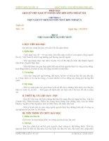 Giáo án ôn tập lịch sử việt nam từ nguồn gốc tới giữa thế kỷ 19