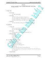 Giáo Án Âm Nhạc Lớp 2 - Tiết 24