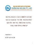 Bảng báo cáo chiến lược xuất khẩu nước mắm Phú Quốc công ty Hưng Thành tại thị trường Pháp