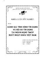 Đánh giá tình hình tín dụng và rủi ro tín dụng tại Ngân hàng TMCP xuất nhập khẩu Việt Nam