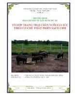 báo cáo đầu tư xây dựng dự án tổ hợp trang trại chăn nuôi gia súc theo cơ chế phát triển sạch CDM