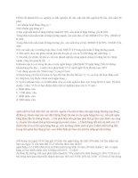 Đề thi IQ vào Agribank 19/10/2009