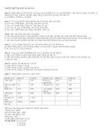 Đề thi tín dụng vào ngân hàng Agribank ngày 24/10/2010