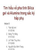 BÀI BÁO CÁO THẢO LUẬN-Tìm hiểu về pha tĩnh Silica gel và Alumina trong sắc ký hấp phụ