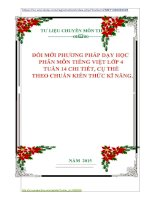 ĐỔI MỚI PHƯƠNG PHÁP DẠY HỌC  PHÂN MÔN TIẾNG VIỆT LỚP 4  TUẦN 14 CHI TIẾT, CỤ THỂ    THEO CHUẨN KIẾN THỨC KĨ NĂNG.