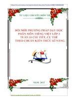 ĐỔI MỚI PHƯƠNG PHÁP DẠY HỌC  PHÂN MÔN TIẾNG VIỆT LỚP 2  TUẦN 33 CHI TIẾT, CỤ THỂ    THEO CHUẨN KIẾN THỨC KĨ NĂNG.