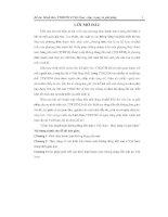 BÀI BÁO CÁO THỰC TẬP-ĐỀ ÁN HÌNH THỨC TTKDTM Ở VIỆT NAM-THỰC TRẠNG VÀ GIẢI PHÁP