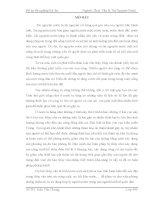 đồ án kỹ thuật tài nguyên nước Nghiên cứu phương án dự báo lũ trên song Cả tỉnh Nghệ An