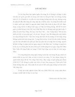 """TIỂU LUẬN-""""Nợ công Việt Nam, thực trạng và giải pháp giai đoạn 2008-2010"""