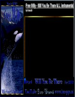 FREE WILLY - WILL YOU BE THERE ?